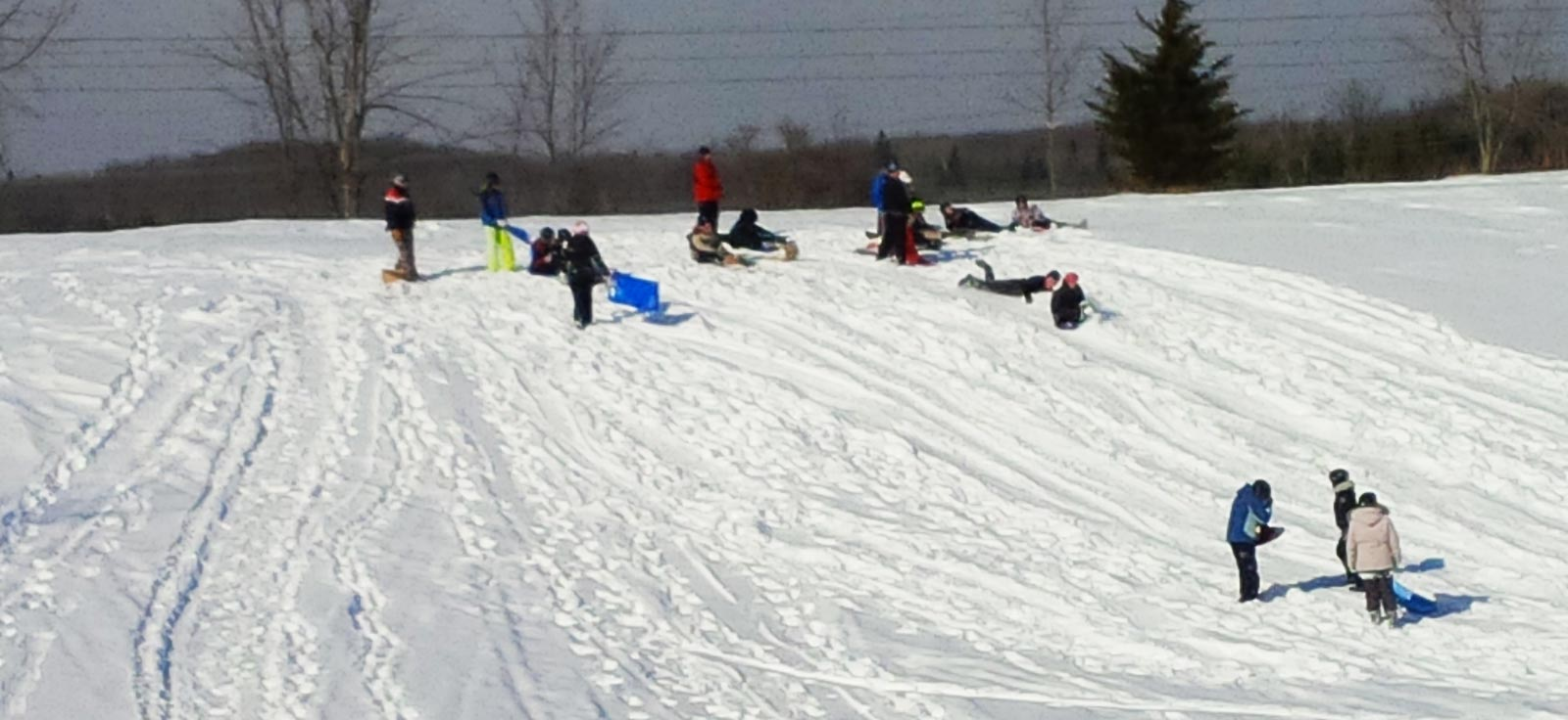 View of children tobogganing